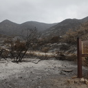 2013-05-04-Springs-Fire-entrance-to-La-Jolla-Canyon-IMG 7686
