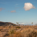 view-from-road-near-Hidden-Valley-Joshua-Tree-2011-11-13-mriley-CRW 9029