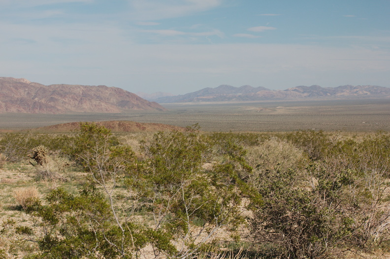 view-of-Pinto-Basin-from-S-of-pass-Joshua-Tree-NP-2018-03-15-IMG 4086