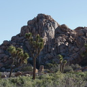 view-rock-formations-entrance-to-Hidden-Valley-Joshua-Tree-NP-2017-03-25-IMG 4357