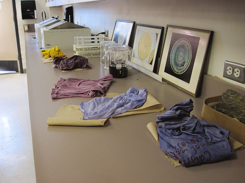225-logwood-dyed-shirts-IMG_0127.jpg