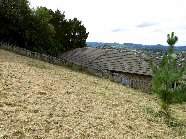 Hill-Place-mowed-one-day-earlier-2017-05-29-IMG_8390.jpg