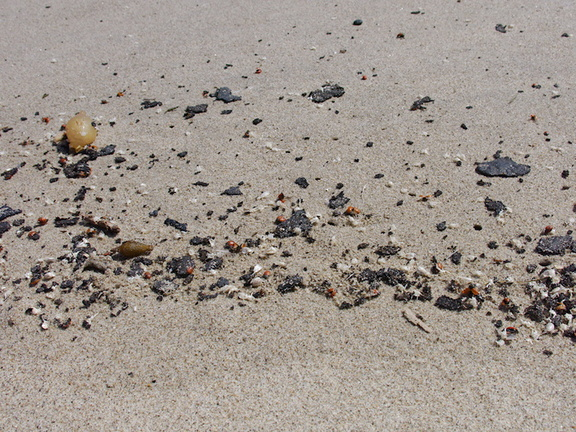 oil-tar-fragments-washed-up-on-Ormond-Beach-2013-04-15-IMG 0539