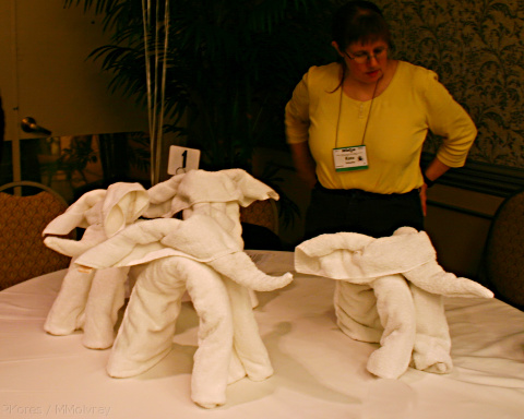 two towels, a smaller hand towel for the head, and a batch towel for the body, rolled to make a rather realistic elephant.  Although mine was a bit knock-kneed.  It takes practice.)