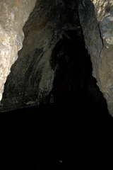 cave-entrance-Circle-X-ranch-2011-09-19-IMG 3393