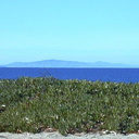 anacapa-from-sycamore-dune1-2002-12-25