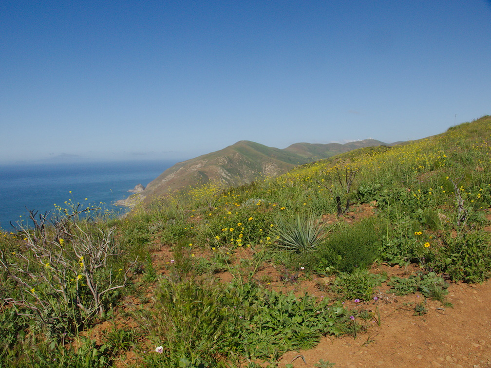 view-from-top-toward-ocean-SW-Chumash-Trail-Pt-Mugu-2017-03-27-IMG 8039