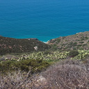 view-from-Chumash-trail-Pt-Mugu-2012-08-13-IMG 2635