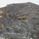 2013-05-04-Day3-Springs-Fire-burn-at-La-Jolla-Canyon-Pt-Mugu-IMG 0700