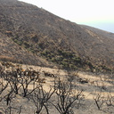 2013-05-26-severely-burned-flats-and-refugium-Chumash-IMG 0903