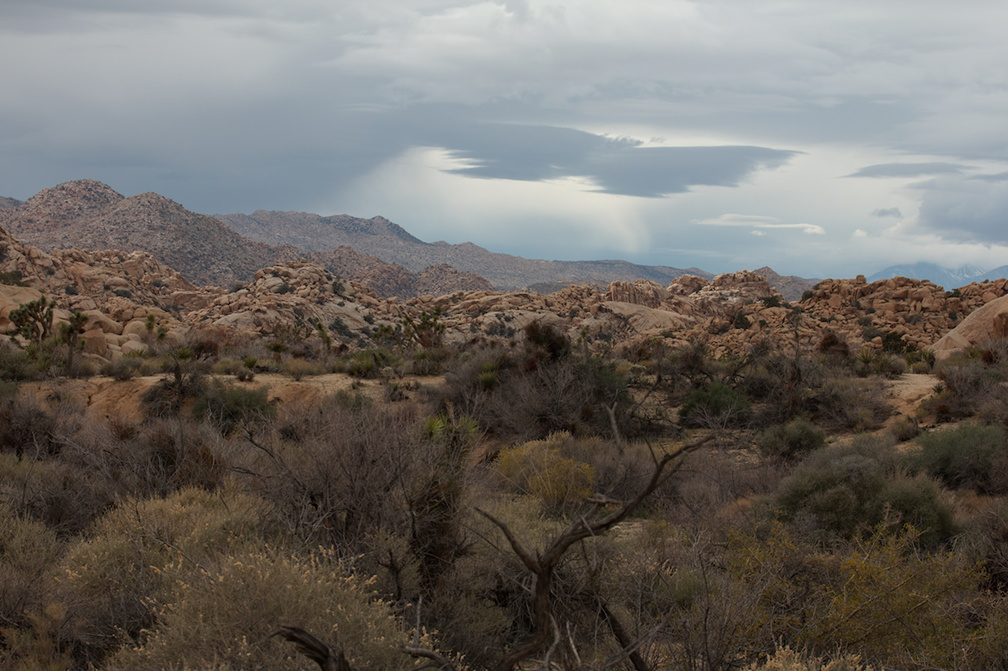 view-across-Hidden-Valley-trail-Joshua-Tree-NP-2016-03-05-IMG 2944