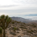 view-from-pass-Joshua-Tree-NP-2017-01-02-IMG 3694