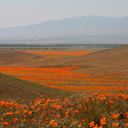 views-from-height-of-poppy-preserve-img 7024