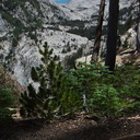 view-from-trail-near-Heather-Lake-SequoiaNP-2012-08-02-IMG 2587