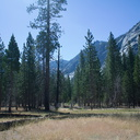 Kings-Canyon-and-Sequoia