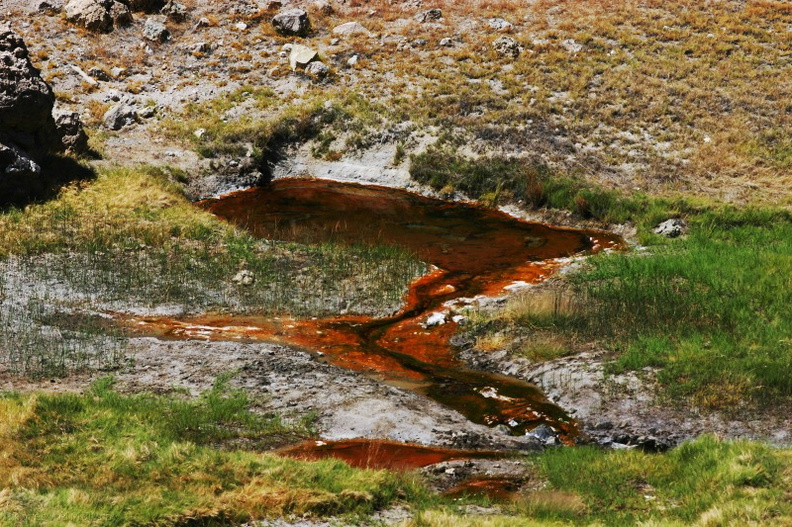 hot-creek-orange-iron-sulfur-pool-img_4517.jpg