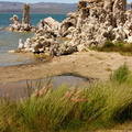 Mono-Lake-flies-view-mm8
