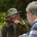 David-Wagner-with-handlens-Brent-Mishler-Fall-Creek-Henry-Cowell-SP-SoBeFree19-2014-03-31-IMG 0075