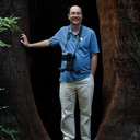 giant-redwood-with-Paul-Wilson-for-scale-Austin-Creek-SP-2016-03-19IMG 3013