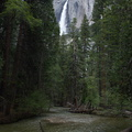 Merced-River-and-Yosemite-Falls-2010-05-24-IMG 0853