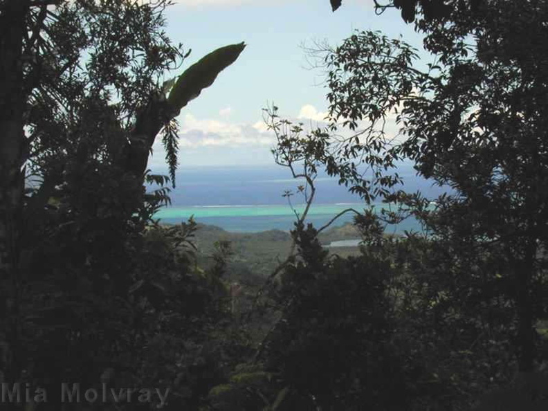 Tholo_Fiji_oceanview-2000-Nov-Dec.jpg