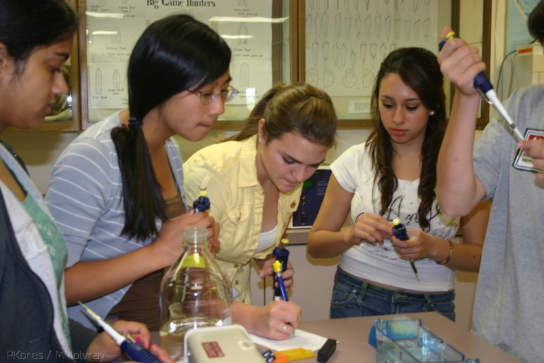 09-PCR-Workshop-Moorpark-2008-June-IMG_7395.jpg