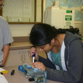 11-PCR-Workshop-Moorpark-2008-June-IMG 7400