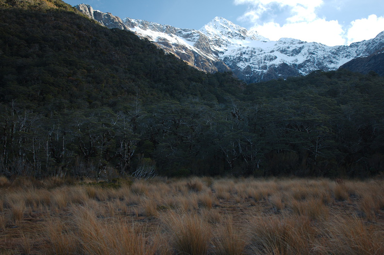 mountains-and-Nothofagus-beech-forest-Bealeys-Valley-Arthurs-Pass-2013-06-14-IMG 8219