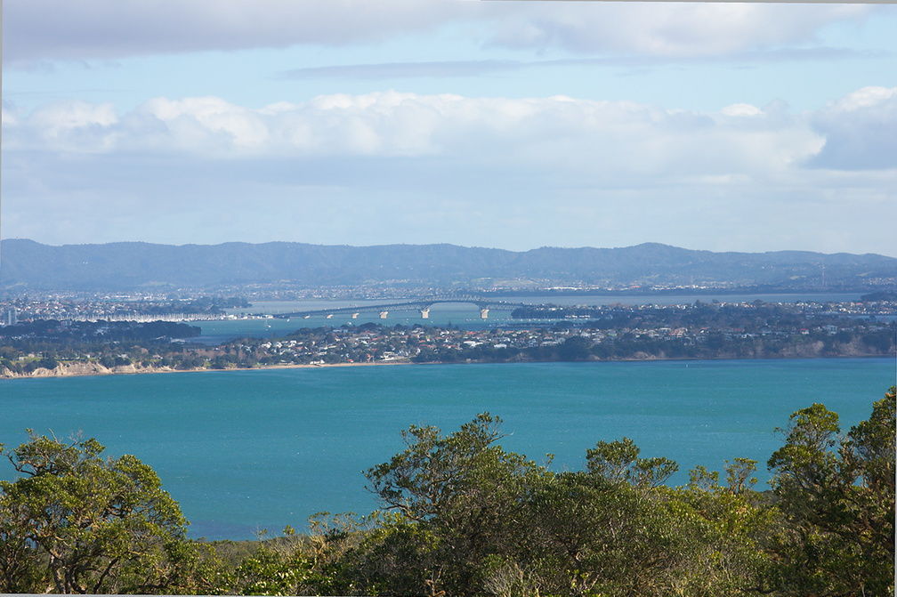 Auckland-from-Rangitoto-summit-track-26-07-2011-IMG 3271