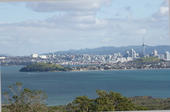 Auckland-from-Rangitoto-summit-track-26-07-2011-IMG 3272