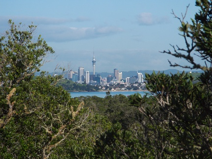 Auckland-from-Rangitoto-summit-track-26-07-2011-IMG 9481