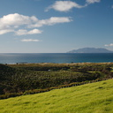 view-east-Great-Barrier-Island-West-End-Track-Tawharenui-2013-07-06-IMG 8991