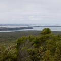 view-toward-Hauraki-Gulf-from-Rangitoto-2015-11-29-IMG 6423.
