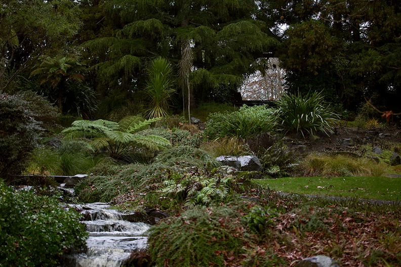 watercourse-to-Cypress-Pond-Ayrlies-Garden-Auckland-2013-07-03-IMG_8813.jpg