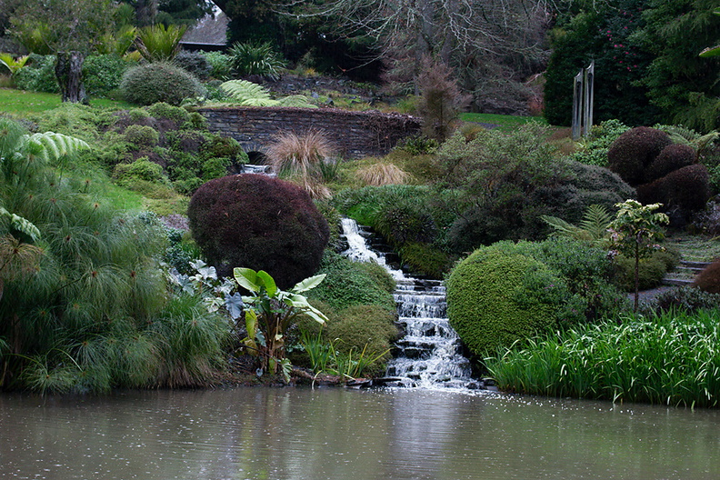 waterfalls-to-Ollies-Pond-Ayrlies-Garden-Auckland-2013-07-03-IMG_8809.jpg