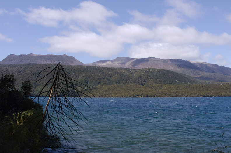 view-of-Mt-Tarawera-Tarawera-Outlet-to-Humphries-Bay-Track-2015-10-17-IMG_5908.jpg