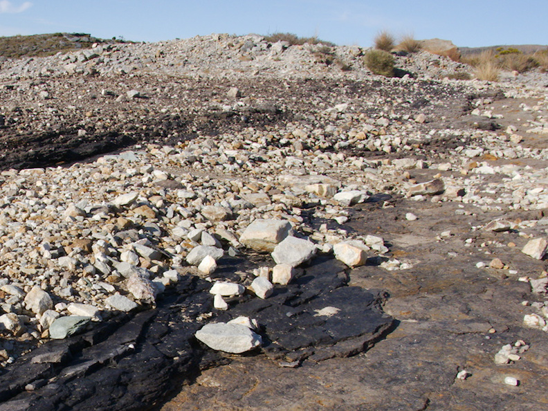 shale-and-coal-visible-in-surface-rock-Denniston-plateau-2013-06-12-IMG_1369.jpg