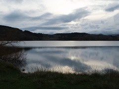Lake-Tutira-09-06-2011-IMG 8383