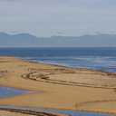 sandbar-and-oystercatchers-from-Abel-Tasman-coast-track-2013-06-07-IMG 1189