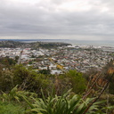 view-of-Nelson-from-Botanical-Hill-2013-06-09-IMG 1248