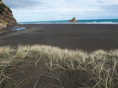 light-dune-grass-black-sand-beach-Karekare-22-07-2011-IMG 9421