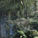 biokarst-rock-formations-of-arch-of-Natural-Bridge-Mangapohue-2013-06-21-IMG 1733