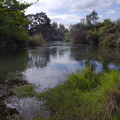 Waitahanui-River-view-2015-10-28-IMG_6109.jpg