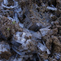 frost-crystals-lifting-earth-Tongariro-River-Walk-2016-07-12-IMG_7111.jpg