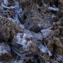 frost-crystals-lifting-earth-Tongariro-River-Walk-2016-07-12-IMG 7111