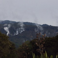 steam-vents-near-Turangi-boat-launch-Lake-Taupo-2016-07-13-IMG_7145.jpg