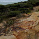 sandstone-with-iron-tracings-South-Head-Hokianga-09-07-2011-IMG 9148