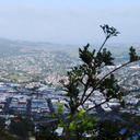 panorama-Whangarei-town-and-harbor-sm