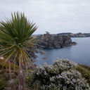 view-of-coast-on-track-to-Kariparipa-Pt-Rawhiti-Bay-of-Islands-2015-09-15-IMG 1333