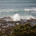 Oregon-coast-2014-11-08-IMG 0262.